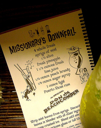 missionarys-downfall-book