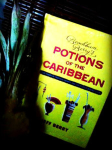 Cocktails with Rhum Arrangé Book Potions